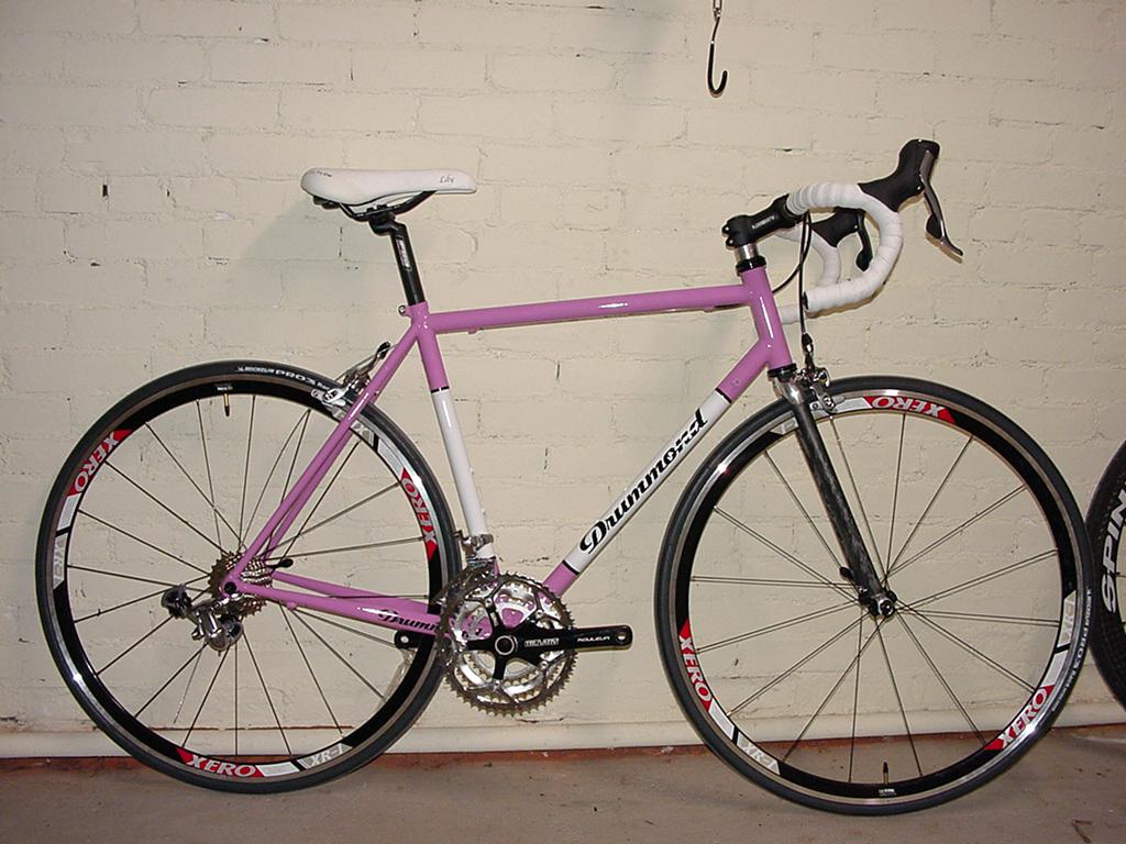 pink_bike_lg